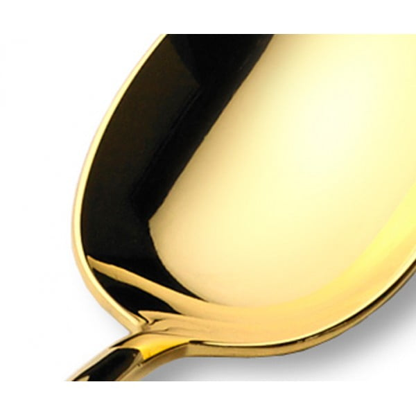 Набор столовых приборов CUTIPOL MITHOS GOLD полированный