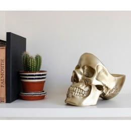 Органайзер для мелочей череп Suck UK Skull золотой