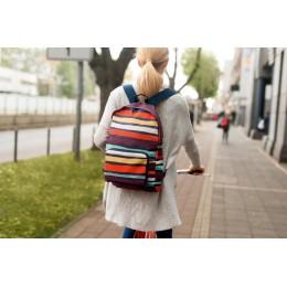 Рюкзак складной Mini Maxi Artist Stripes