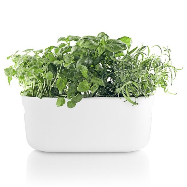Кашпо для растений с функцией самополива белое