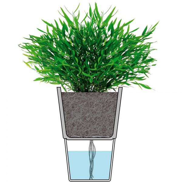 Горшок с функцией естественного полива 12,5 см серый