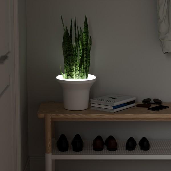 Кашпо для растений Ora
